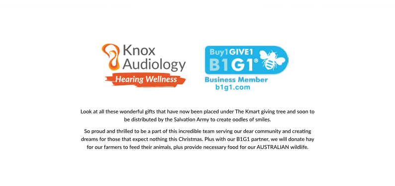 Knox Audiology_Christmas Card 2019 p4
